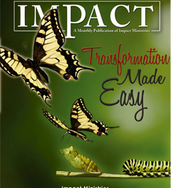 Impact Magazine – December 2009