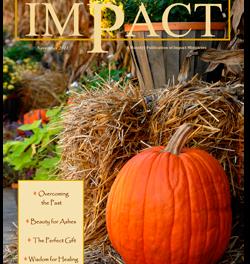 Impact Magazine – November 2011