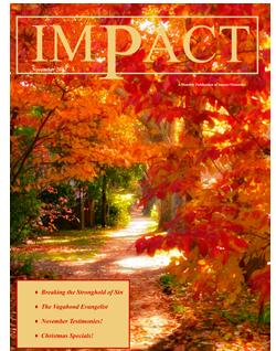 Impact Magazine – November 2012