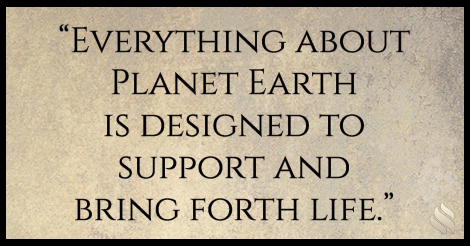 Why do you say what we believe about creation is so important?
